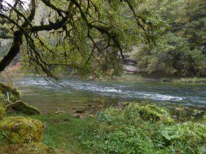 Le Doubs franco-suisse en aval du Theusseret