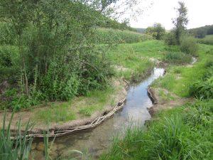 Travaux de restauration de la Creuse à Avot (21)