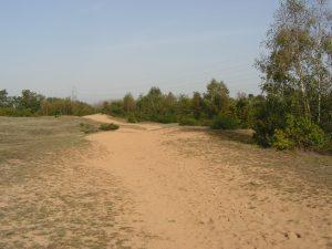 Dunes de Sermoyer
