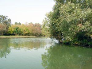 Ile de la Motte