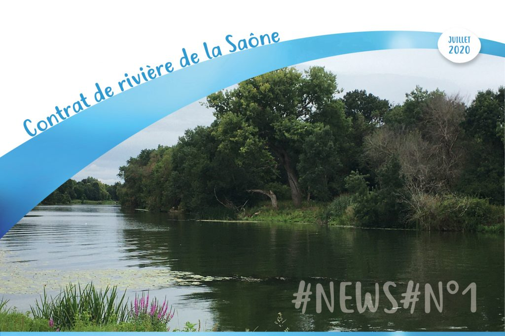 Newsletter CR Saône 1